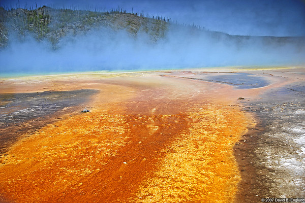"The run off streams from the Grand Prismatic hot spring are extremely colorful. Many of the colors come from microorganisms called ""thermophiles"" that live in the hot waters."